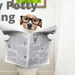 Puppy Potty Training Instructions Wag Train