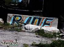 Street art (graffiti). RIDE!