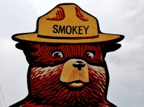 """Did anyone else ever notice that Smokey's expression is less stern and more """"guess what I just did? ;)"""""""