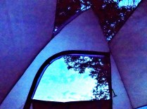 View from inside my tent.