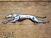 Greyhound station - Detroit, MI.
