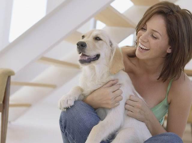 House Sitting, woman holding dog.