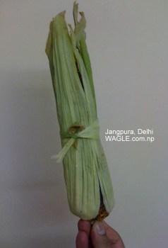 corn jangpura delhi