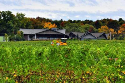Grape harvester in front of brew deck