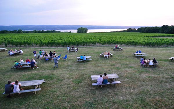 Guests at picnic tables on the lawn with vineyard and lake