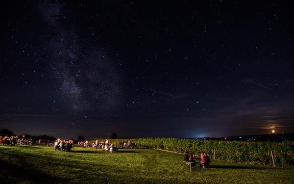Starry night sky at Pub Night over Vineyard