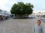 Albufeira Town Square