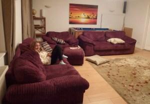 House Sit