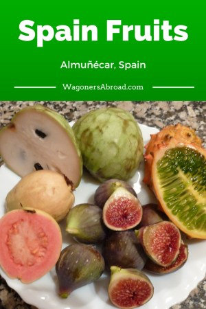 Southern Spain Fruits - Read more on WagonersAbroad.com