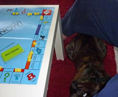 Monopoly Dog!