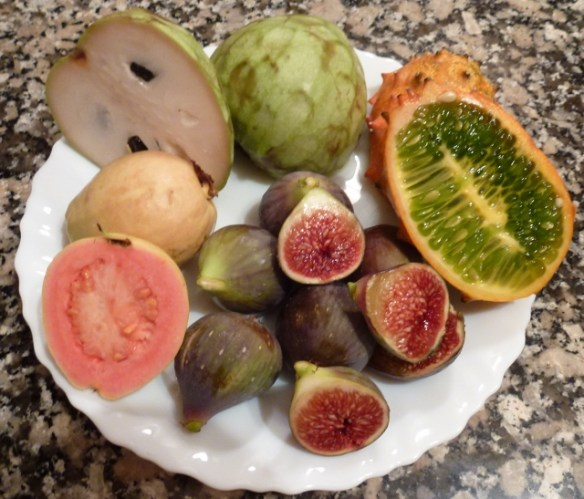Spanish fruits in Costa Tropical Spain