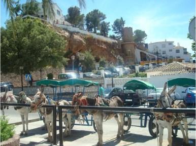Mijas Spain - Donkey Taxi