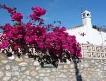 Pops of color - Spring day in Almunecar (2)