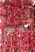Chili Peppers Budapest Hungary