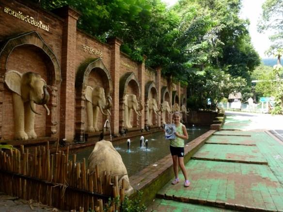 Chiang Mai Zoo and Aquarium Entry