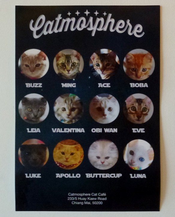Catmosphere Sign