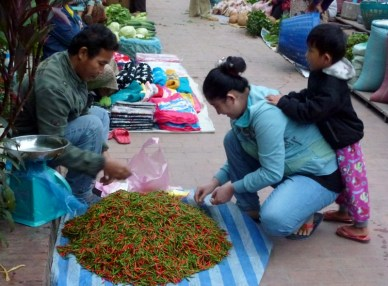 A family preparing their chili peppers for the market.
