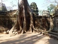 Wagoners-Abroad-Angkor-Wat-Tour-55