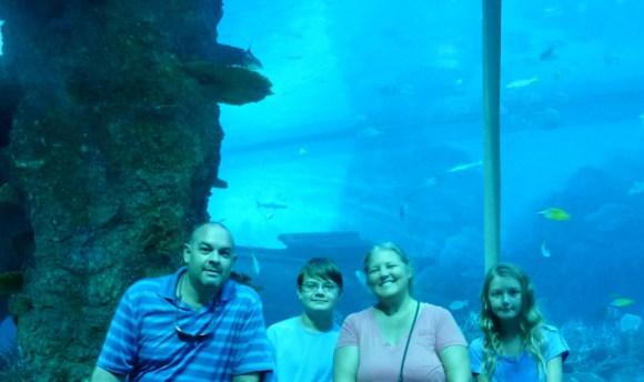 SEA-Aquarium-Experience-49