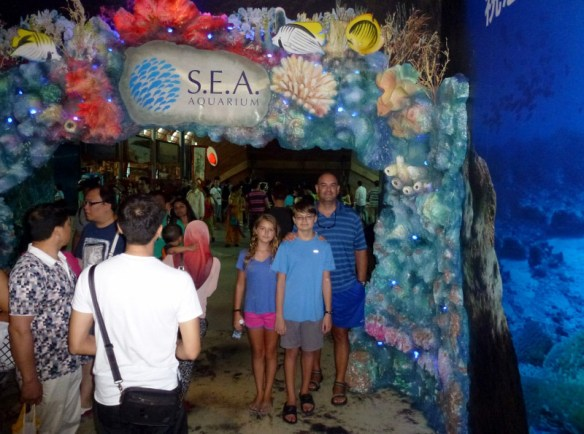 SEA-Aquariuam-Experience-53