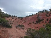St-George-Adventure-Hub-Side-by-Side-with-Southern-Utah-Adventure-Center-50