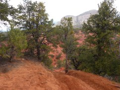 St-George-Adventure-Hub-Side-by-Side-with-Southern-Utah-Adventure-Center-53