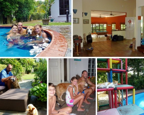 Housesit in Kuala Lumpur - booked with Trusted Housesitters. Read more on WagonersAbroad.com