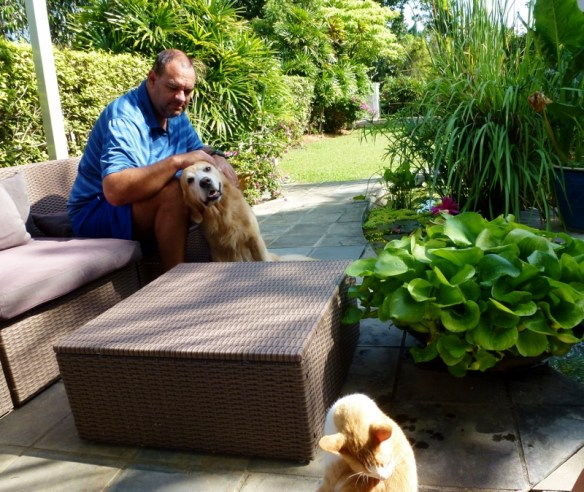 Housesitting a great alternative to pet boarding. House sit Kuala Lumpur - Hanging out at the Koi pond with Luke the dog and Lucky the cat