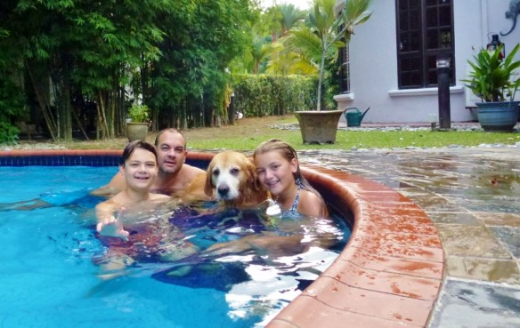 House sit Kuala Lumpur Malaysia - Wagoners Abroad Swimming with Luke. We love pet sitting and house sitting, this was extra special.