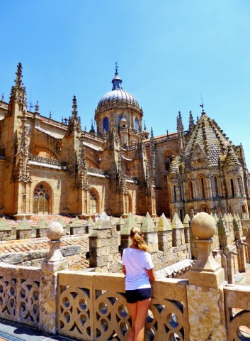 IERONIMUS. medieval towers of the cathedral Salamanca City Discovery 48 hour Salamanca Card