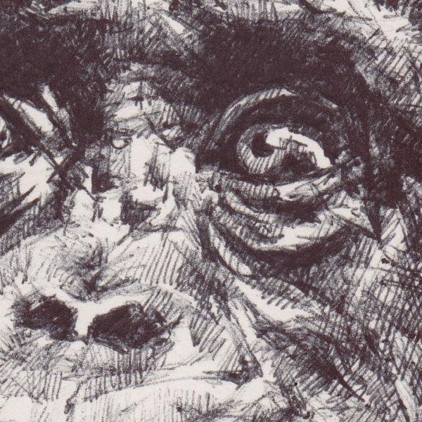 Chimp (detail)