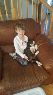 happy tails 8