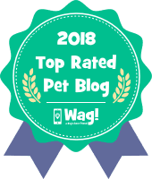 Top Wag! Walking Blog of 2018 - Jacksonville, FL