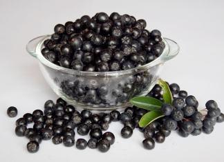 Khasiat buah aronia untuk membunuh sel kanker