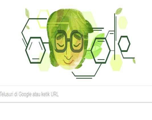 Siapa Asima Chatterjee Google Doodle Hari Ini