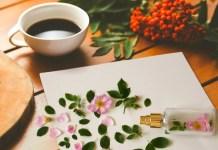 Aroma Kopi untuk Menghilangkan Bau Menyengat di Ruang Kerja