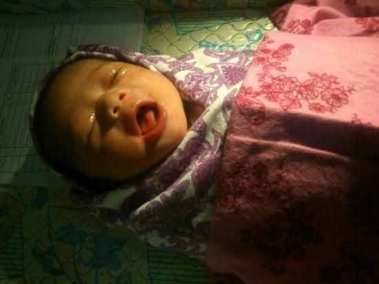 Elka sesaat setelah lahir