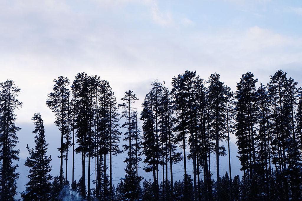 Visit Alberta_Lake Louise_Banff_Travel Blogger Canada_Jonathan Waiching Ho