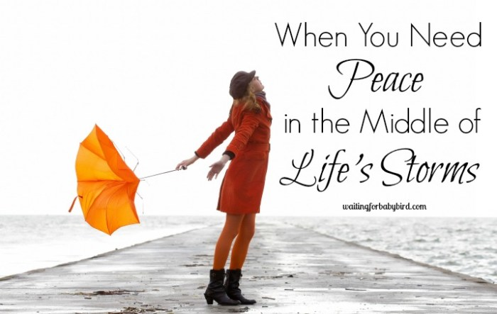 When You Need Peace in the Middle of Life's Storms