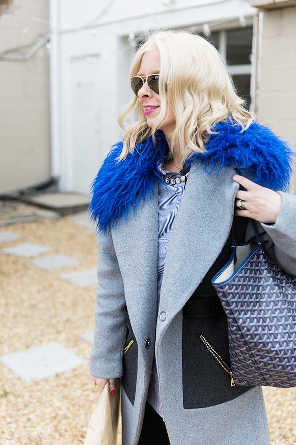 Blue fur and Goyard
