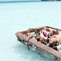 Seashells and baby blue water, Turks