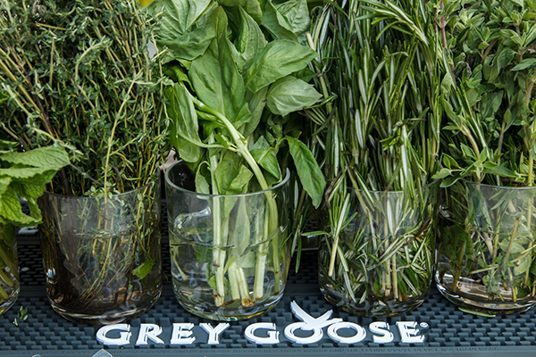 Grey Goose and fresh herbs