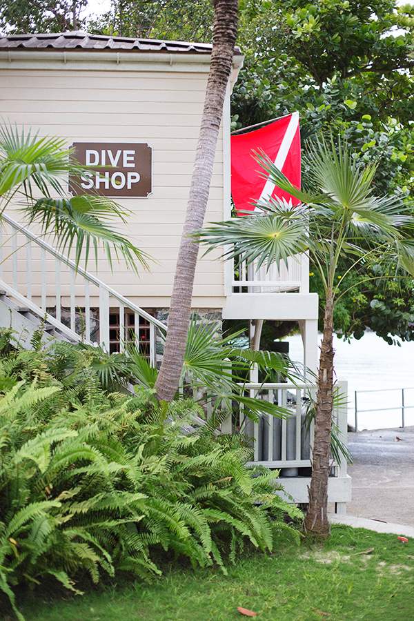 Caneel Bay Resort #travel #vacation #usvi