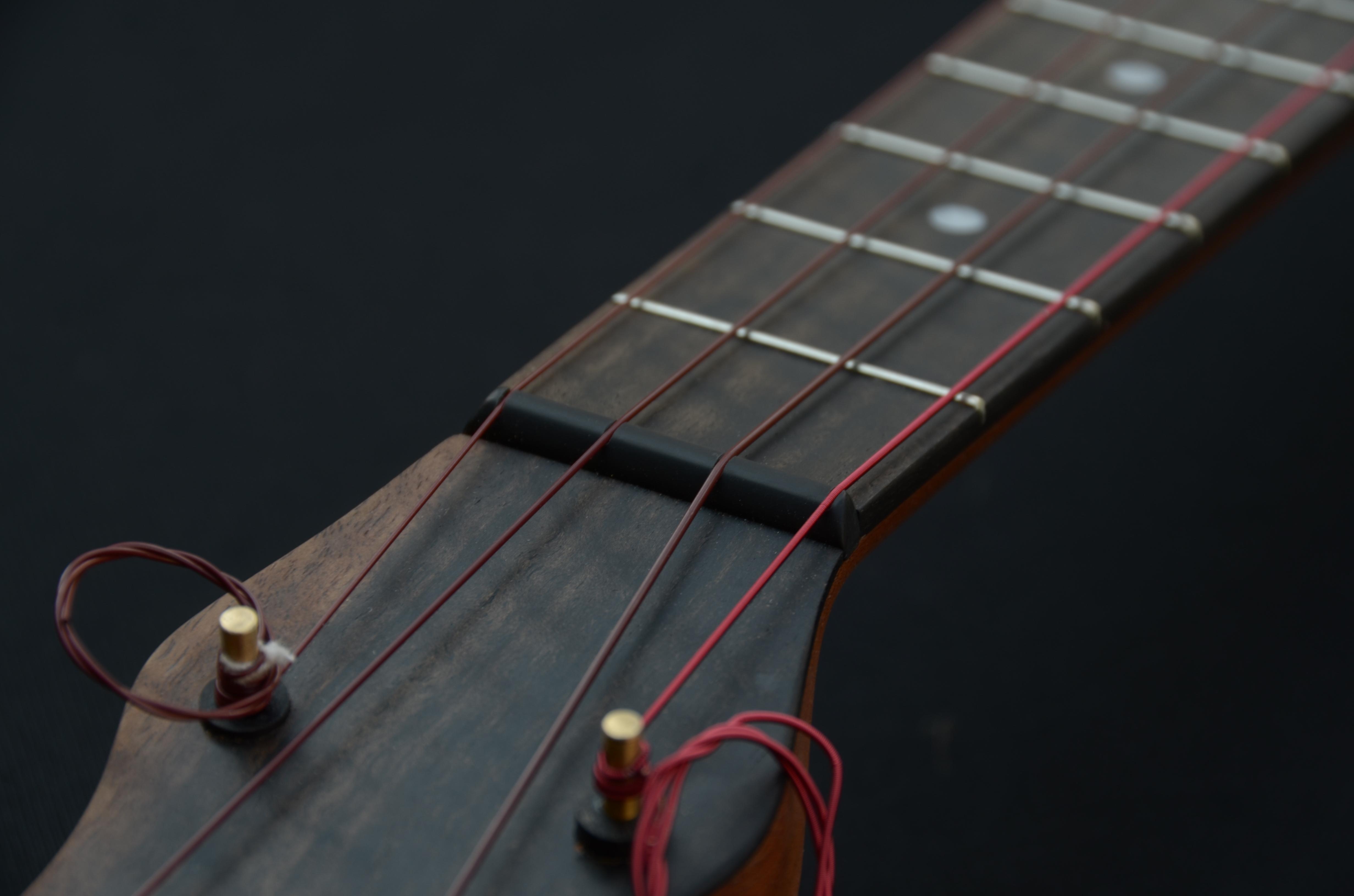 banjoukulele-fretboard