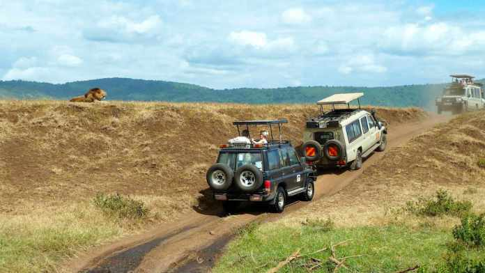 Afryka Jeep Safari