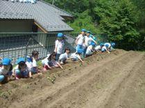 shashinkan04328-10-15