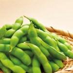 枝豆の栄養がすごい!医師が絶賛の夏野菜。その効能と効果的な調理法とは?