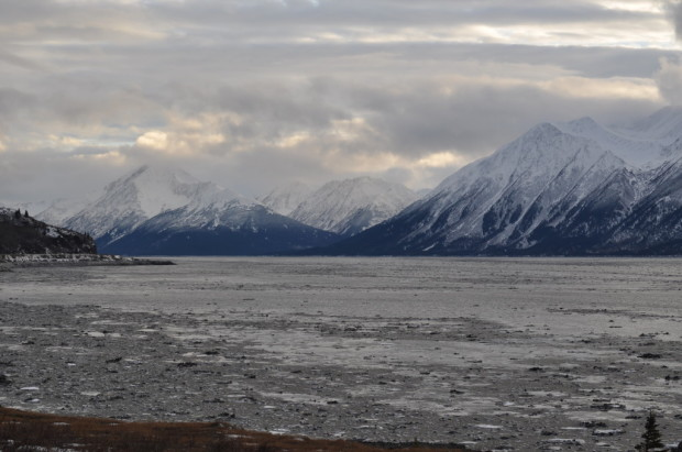 The frozen Turnagain Arm