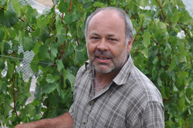 Timo Mayer, Mayer Wines