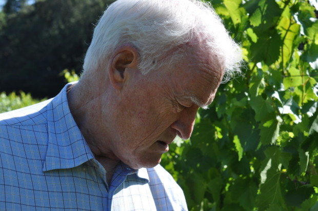 George Vare in his Ribolla Gialla vineyard, July 2012